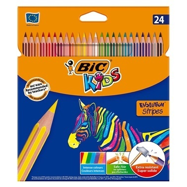 Bic Kuru Boya Kalemi 24Lü Kutu Renkli